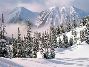 La piel y la nieve. Cuidados